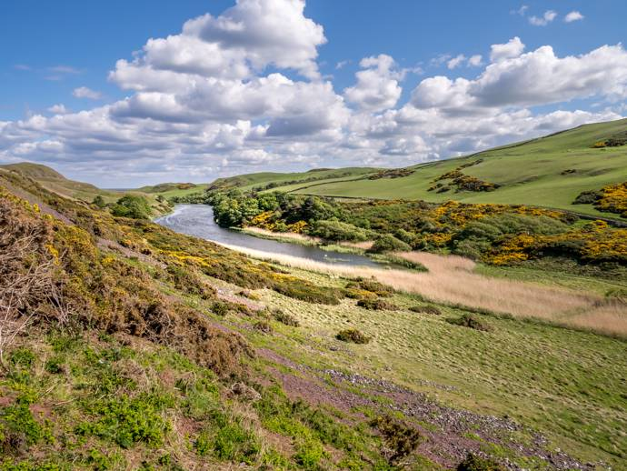 image of a scottish loch surrounded by heathland
